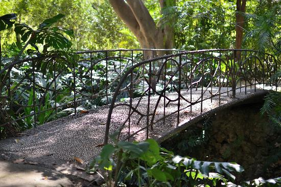 puente-min
