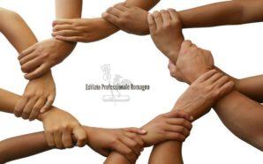Edilizia Professionale Romagna: un progetto davvero innovativo